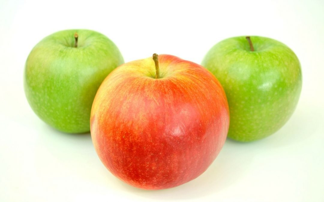 Jabłka dbają o nasze zdrowie oraz urodę!