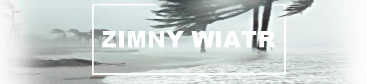 zimny_wiatr - Jesienno-wiosenna walka z przeziębieniem