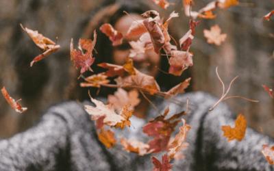 Odżywianie zgodnie z porami roku – jesień