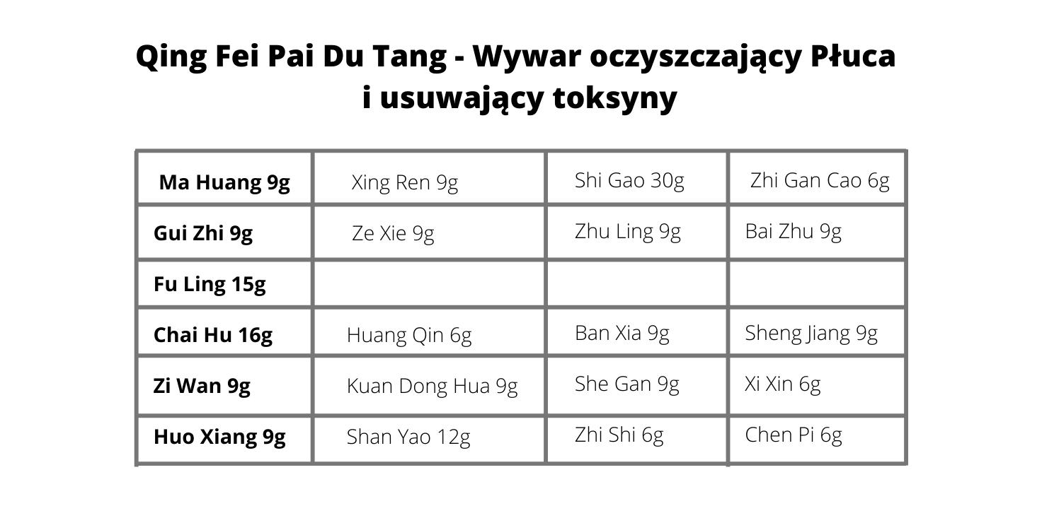 Qing Fei Pai Du Tang - Wywar oczyszczający Płuca i usuwający toksyny