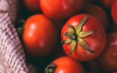 Domowy przecier pomidorowy na zimę