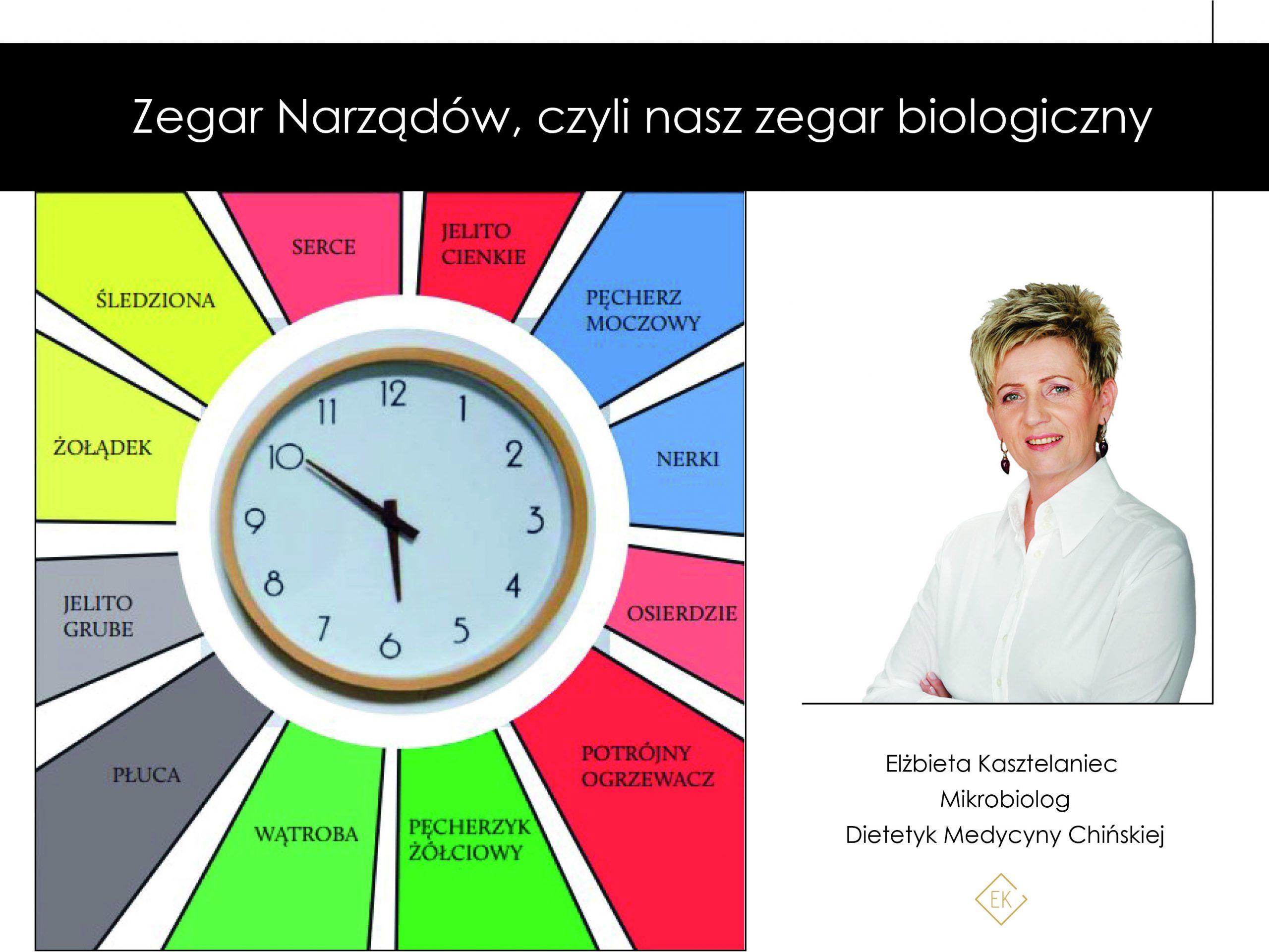 Zegar narządów